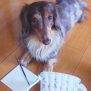 愛犬写真 マーチ